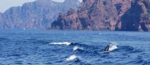 Korsika_KimBoje_11